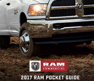 ram-commercial-pocket-cat.jpg
